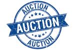 Landscape_auction