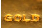 Landscape_gold-bar1-copy_20141106031704